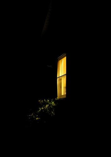 window-at-night3[1]